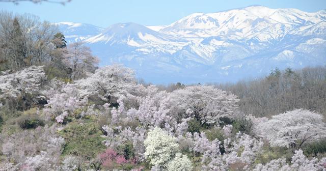 浄土平・吾妻山